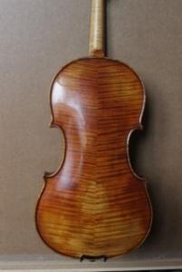 Violin: Cannone STV850